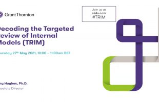 Decoding the Targeted Review of Internal Models (TRIM)