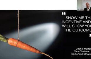 Steering Sales Behaviour Using Incentive Schemes