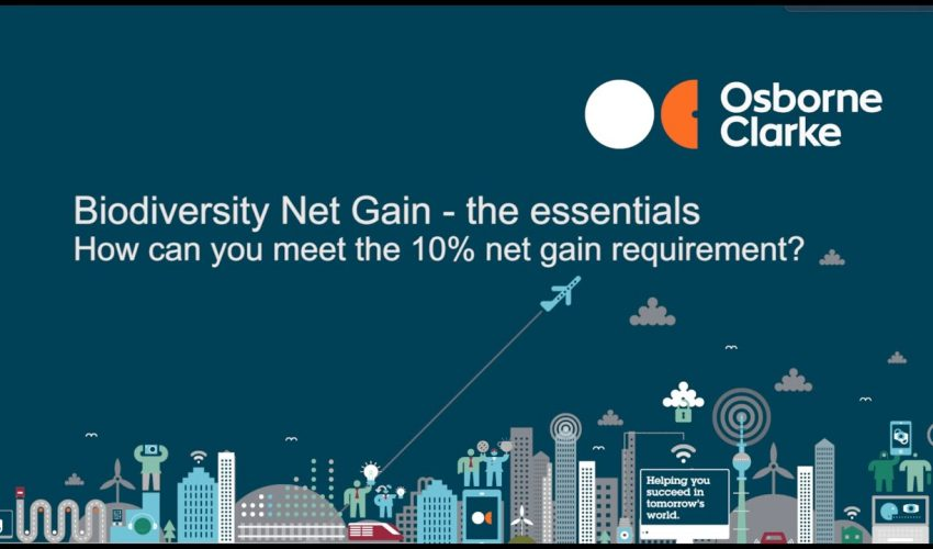 Biodiversity Net Gain – How can you meet the 10% Net Gain requirement?